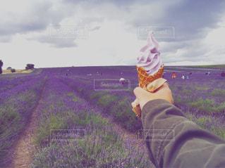 草の覆われてフィールド上に立っている人の写真・画像素材[1353391]
