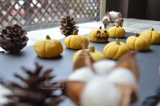 カメラ,ハロウィン,かぼちゃ,クッキー,南瓜,カボチャ,秋の味覚