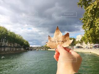 水から頭を付着キリンの写真・画像素材[1611577]