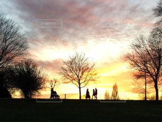 背景の夕日とツリーの写真・画像素材[1611582]