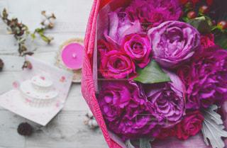 植物にピンクの花の写真・画像素材[1791299]