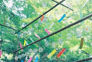 近くに傘のアップの写真・画像素材[711126]