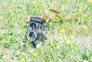 フィルムカメラの写真・画像素材[712288]