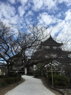 和歌山城の写真・画像素材[1038391]