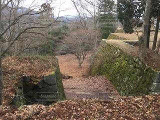 山頂の城跡の写真・画像素材[2241239]