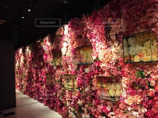 可愛い花に囲まれての写真・画像素材[2373711]