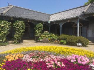 花,春,絶景,長崎県,グラバー園