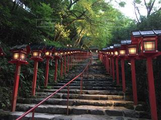 貴船神社の階段の写真・画像素材[791761]