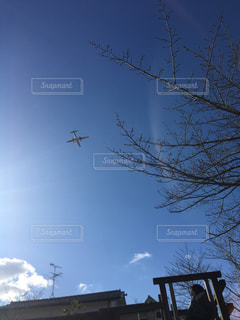 空,公園,飛行機,お出かけ