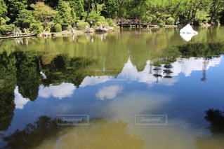 木々 に囲まれた水の体 - No.759268