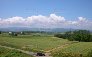 背景の木と大規模なグリーン フィールドの写真・画像素材[895620]
