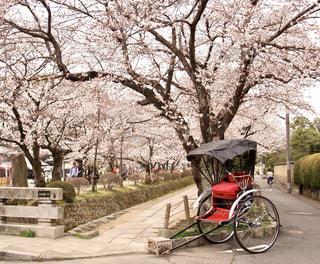 春の古都 - No.931813
