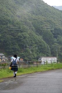 里山の通学路の写真・画像素材[994878]