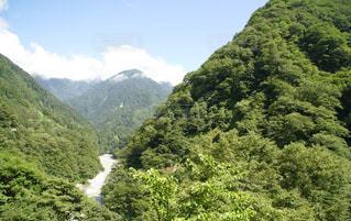 背景の山と木の写真・画像素材[994880]