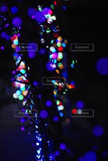 光の夢の写真・画像素材[1089938]