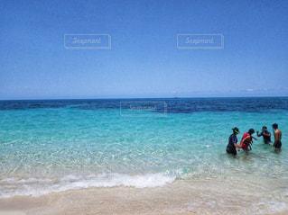 最高の海でシュノーケリングの写真・画像素材[1337727]