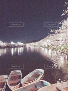 自然の写真・画像素材[57813]