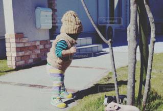 草の中に立っている小さな男の子の写真・画像素材[858893]