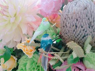 近くの花のアップの写真・画像素材[867325]