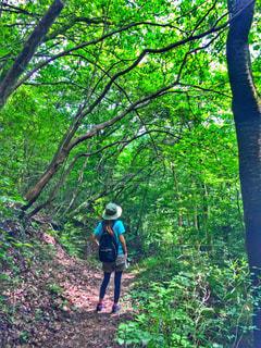 緑豊かなエリアに立っている男の写真・画像素材[765982]