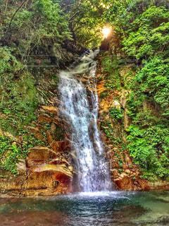 森の中の滝の写真・画像素材[766089]