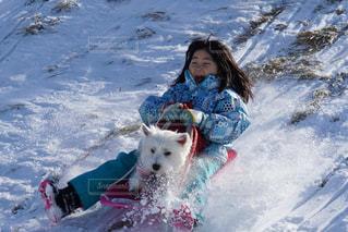 雪の中で犬と人の写真・画像素材[1715854]