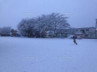 雪に覆われた庭の人の写真・画像素材[1754514]