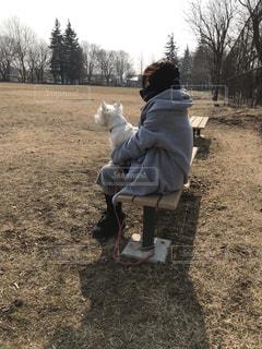犬の写真・画像素材[2006473]
