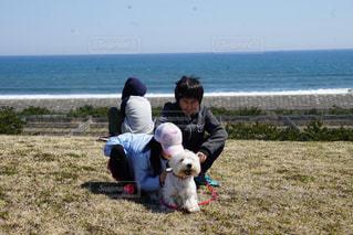 家族,犬,海,公園,春,散歩,海岸,子供,風,男の子,ドライブ,ドッグラン,白浜,ウエストハイランドホワイトテリア,白い犬