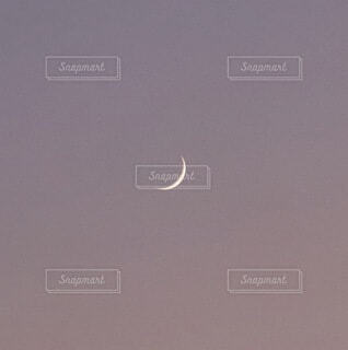 自然,風景,空,屋外,夕方,月,三日月,紫の空