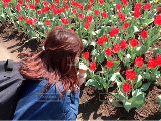 花と私の写真・画像素材[719631]