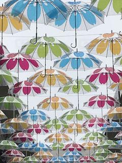 傘,カラフル,オシャレ,三重県,カラー,ジャズドリーム長島