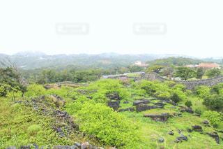 緑,沖縄,旅行,歴史,城跡,今帰仁城