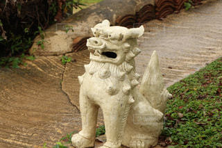 沖縄の守り神、シーサーの写真・画像素材[910518]