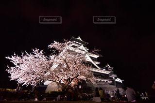 熊本城の写真・画像素材[2722439]