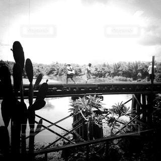 橋を渡る人の写真・画像素材[818735]