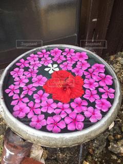 テーブルの上のピンクの花で満たされたボウルの写真・画像素材[768768]