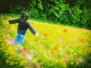 お花に囲まれる私🌼 - No.887159