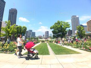 都会の公園の写真・画像素材[1217275]