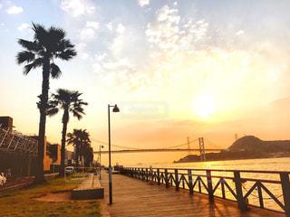 朝日が昇る風景の写真・画像素材[1247669]