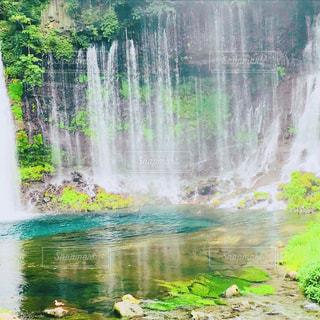 白糸の滝の写真・画像素材[1448074]
