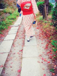 京都の哲学の道を散策(*^ω^*)の写真・画像素材[1597596]