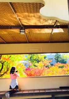 景色を見る茶室風の古屋の写真・画像素材[1597697]