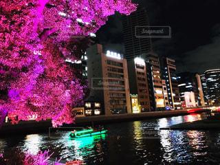 イルミネーションツリーと輝く街の写真・画像素材[1680734]