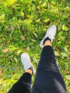 ジョギングシューズの写真・画像素材[1798580]