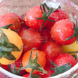 カラフル,水,黄色,水滴,トマト,野菜,グラス,赤色,オレンジ色,フレッシュ