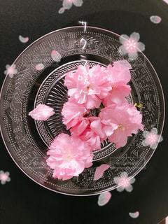 可愛いお花をお気に入りのガラスのお皿に乗せて撮りました(^_^)の写真・画像素材[2121421]