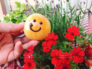 可愛いお花とスマイルパンの写真・画像素材[2140657]