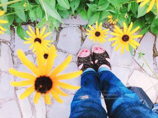 可愛いお花とデニムパンツの写真・画像素材[2414988]