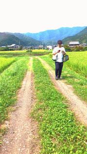 男性,自然,緑,田舎,山,男子,田んぼ,稲,フィルム,帰省,故郷,フィルム写真,フィルムフォト